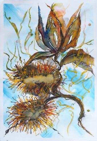 Blue Skies – Coastal Banksia – come and paint in France 3rd/4th May 2019 – with French Translation thanks to Muriel
