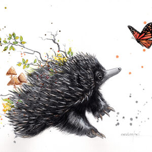 From The Ashes – Echidna – Artist Lynette Orzlowski