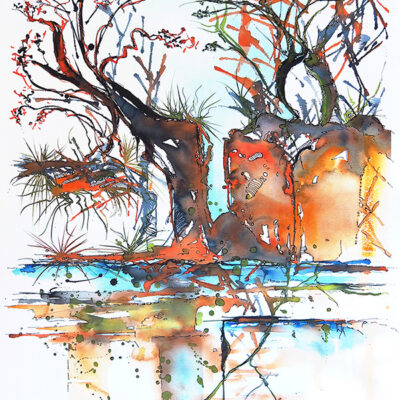 Bush Fire Auction Appeal – The Gully Walk – Artist Wyn Vogel