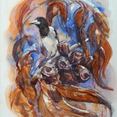 Butcher Bird  – Artist Tony Walker – Watercolour