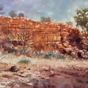 Untraveled Paths – Artist Robin Hicks – Sth Australia