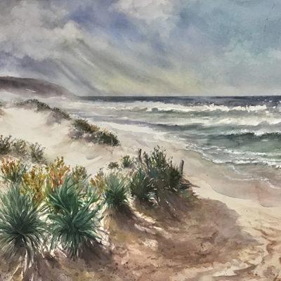 Waitpinga Storm – Artist Robin Hicks – Sth Australia