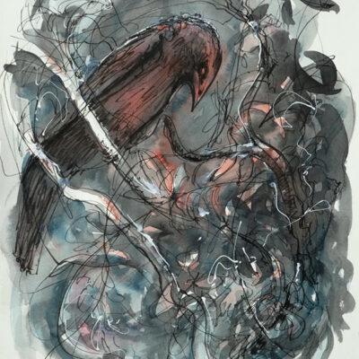 'Brown Bird Sleeping'  – Artist Tony Walker – Acrylic Ink