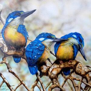 13. Azure Kingfishers – Artist Paul Margocsy – Framed on Board