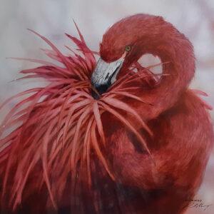 17. Flamingo – Artist Paul Margocsy – Framed on board – glass