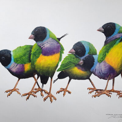 7. Gouldian Finches – Artist Paul Margocsy – Canvas