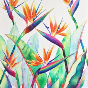 Bird of Paradise – Artist Ferie Sadeghi – Watercolour on Canvas