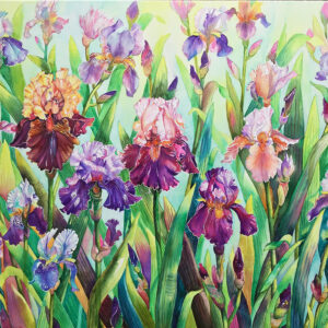 Irises – Artist Ferie Sadeghi – Watercolour on Canvas