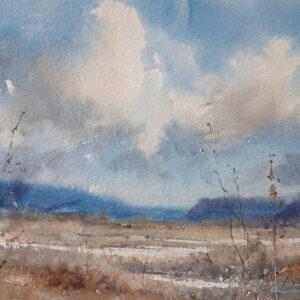 3. Cloudy Visa – Artist Julian Bruere – Watercolour