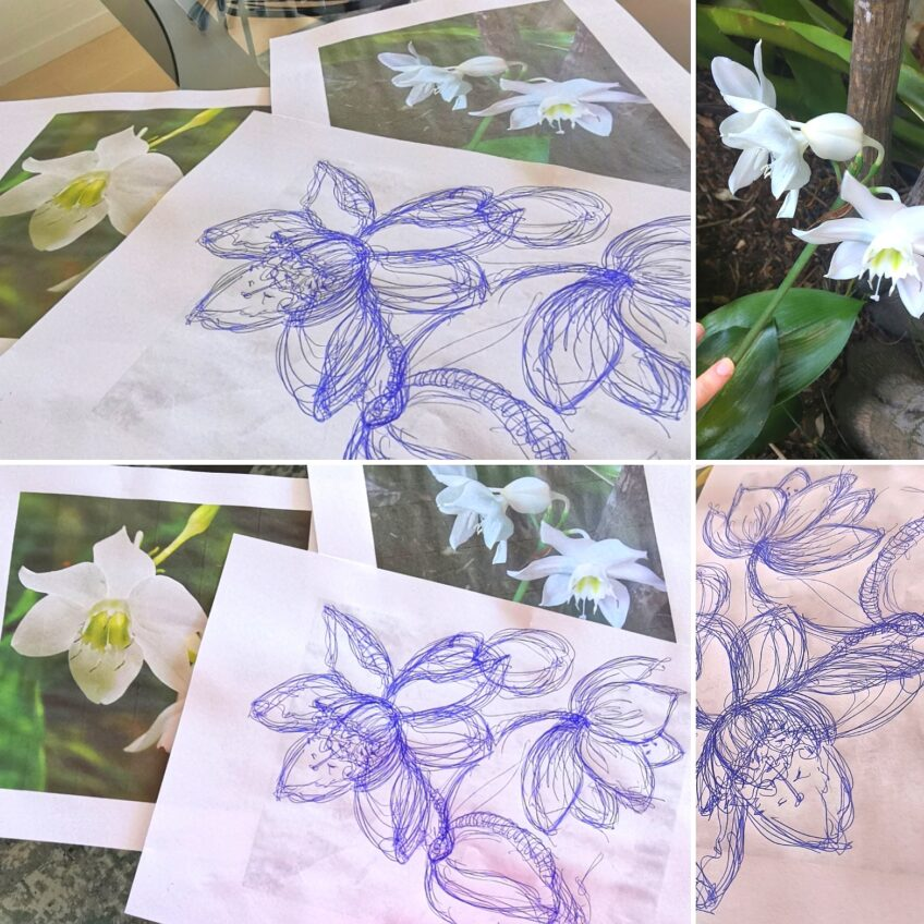 21st August '21 – Picnic and Paint on the Deck with Artist – Wyn Vogel – Modern Botanical