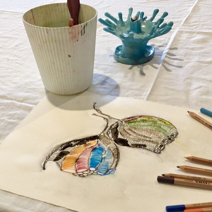 Watercolour Pencils and Pods – Australian Natives – exploring textures and shadows